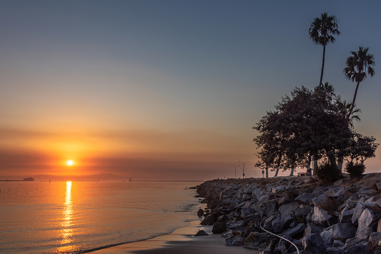 Фотографии калифорнии америка Cabrillo Beach in San Pedro Природа Пальмы Рассветы и закаты берег Камни деревьев Калифорния США штаты пальм пальма рассвет и закат Камень Побережье дерево дерева Деревья