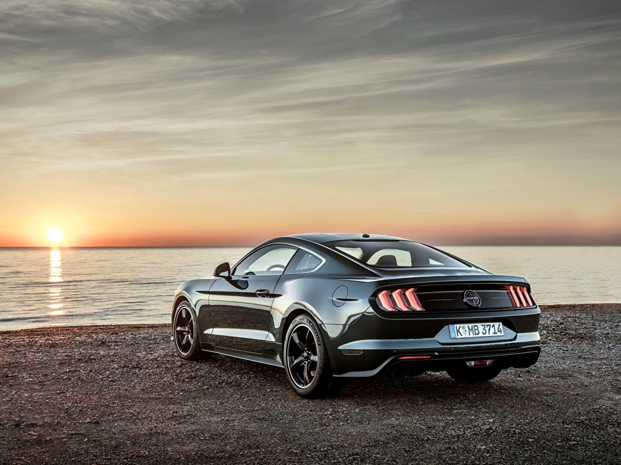 Фотография Форд 2018 Bullitt Mustang рассвет и закат Металлик вид сзади Автомобили Ford Рассветы и закаты авто Сзади машины машина автомобиль