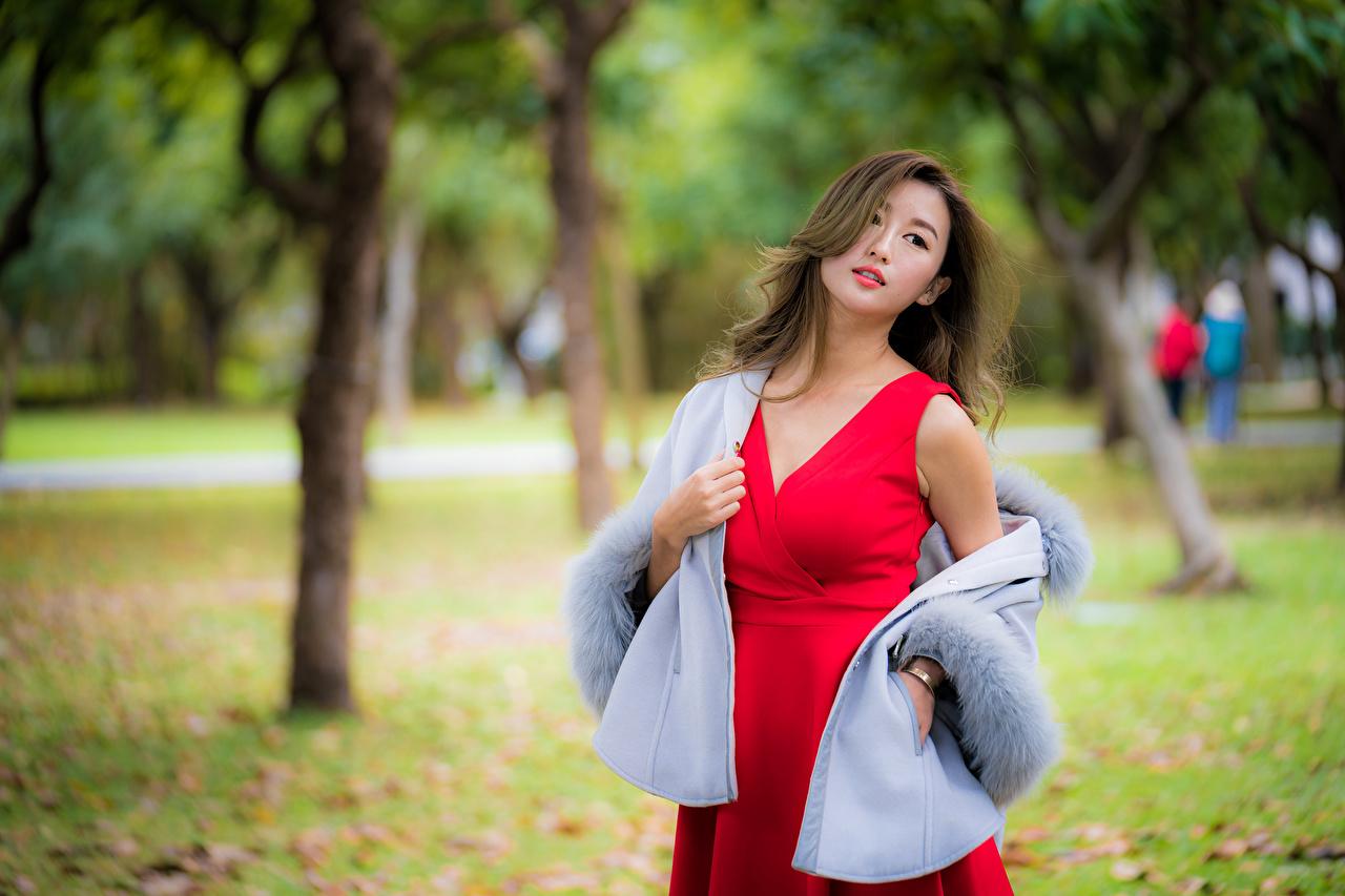 Картинки Размытый фон Поза девушка азиатки смотрит Платье боке позирует Девушки молодая женщина молодые женщины Азиаты азиатка Взгляд смотрят платья