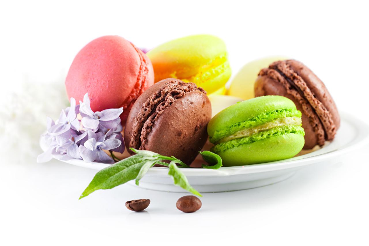 Фото Макарон Разноцветные Пища тарелке Печенье белом фоне Еда Тарелка Продукты питания Белый фон белым фоном