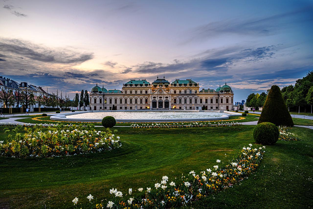 Фотография Вена Дворец Австрия Belvedere Пруд Вечер Газон город Ландшафтный дизайн дворца газоне Города