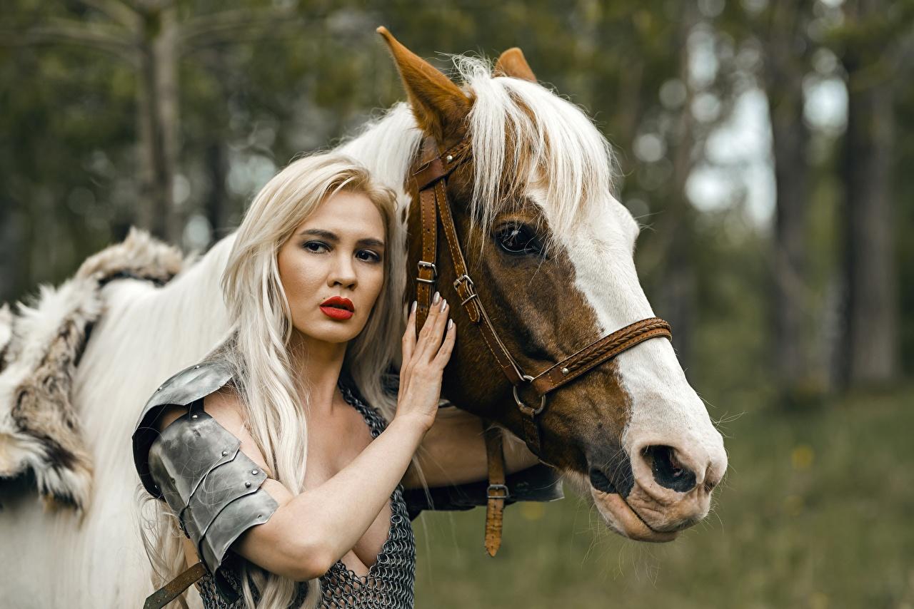 Фотографии броне Лошади блондинок Воители две молодые женщины Руки Взгляд броня лошадь Доспехи доспехе доспехах блондинки Блондинка воин воины 2 два Двое вдвоем девушка Девушки молодая женщина рука смотрит смотрят