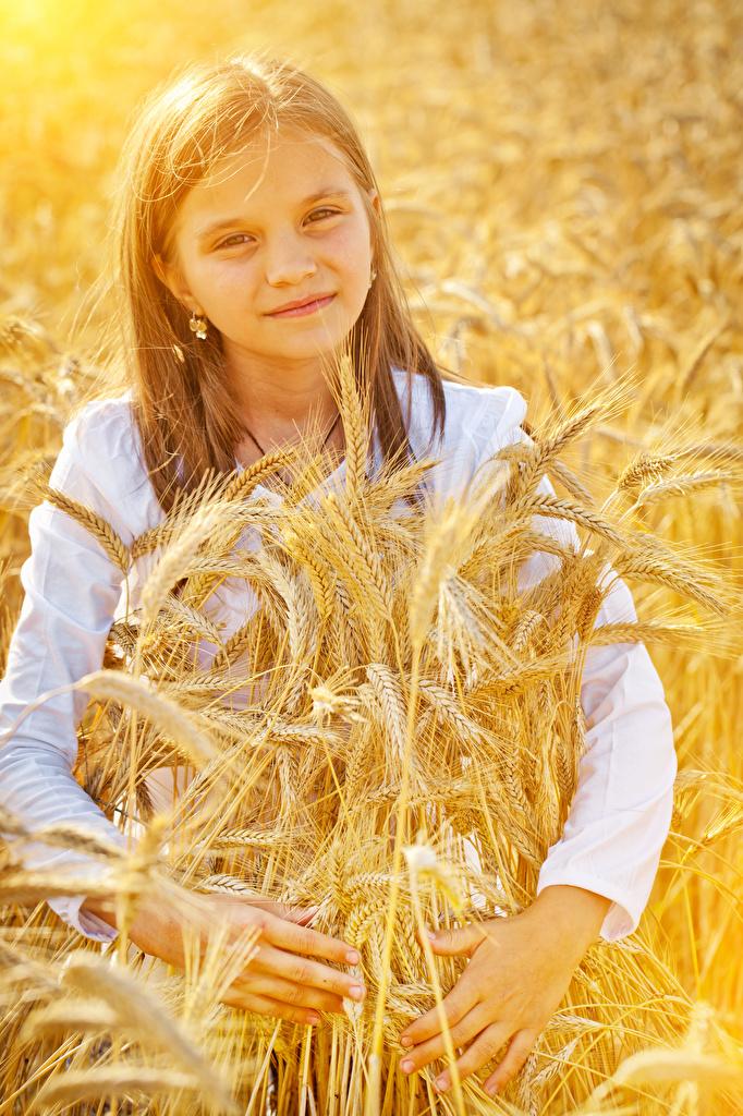Картинка девочка Дети колосок смотрит  для мобильного телефона Девочки ребёнок Колос колосья колоски Взгляд смотрят