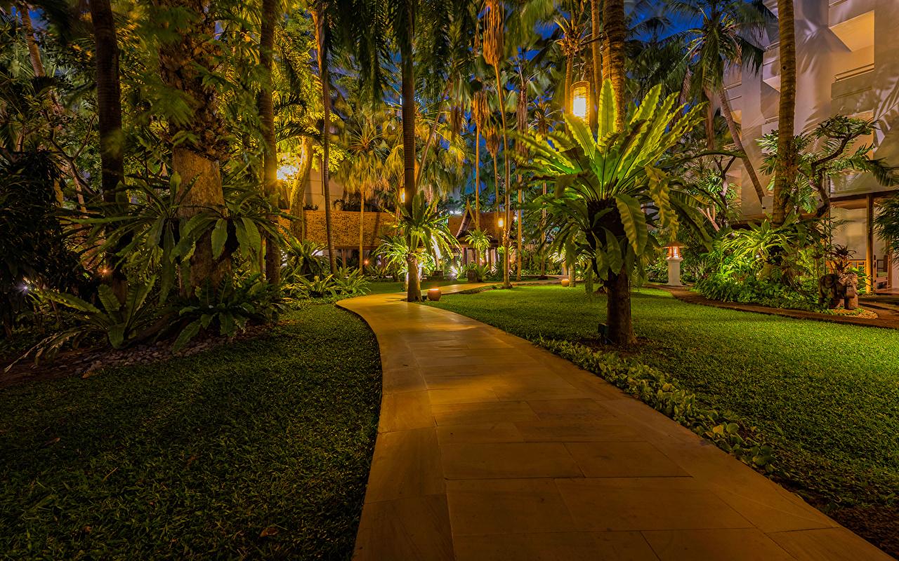 Картинка Таиланд Pattaya Природа Парки Пальмы Тропики Газон Тротуар Уличные фонари