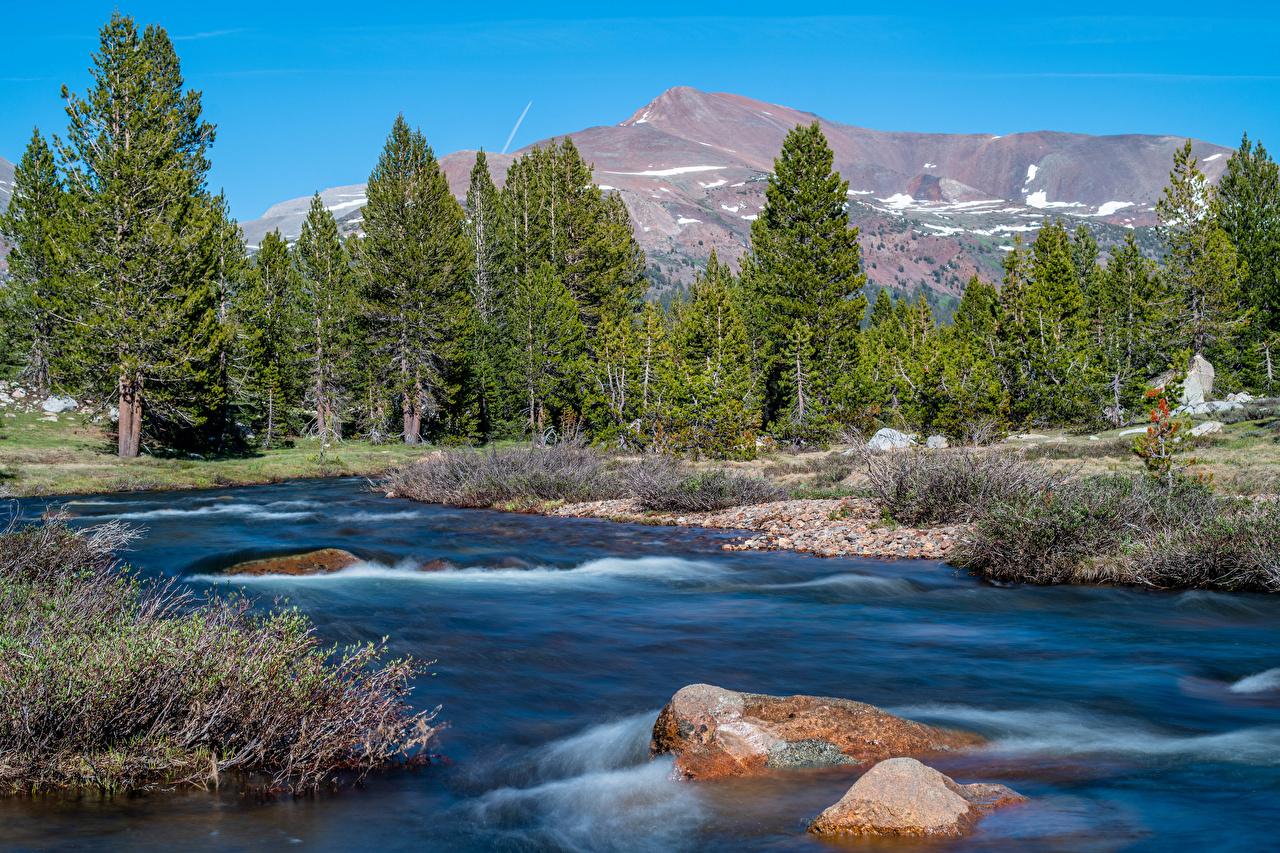 Фото Йосемити Калифорния США гора Природа Парки река Камни калифорнии штаты америка Горы парк Реки речка Камень