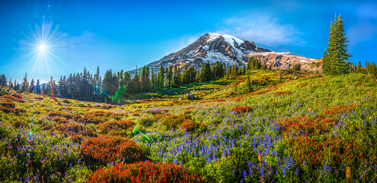 Картинка Вашингтон США панорамная Mount Rainier National Park Горы солнца Природа Парки Пейзаж штаты америка Панорама гора Солнце парк