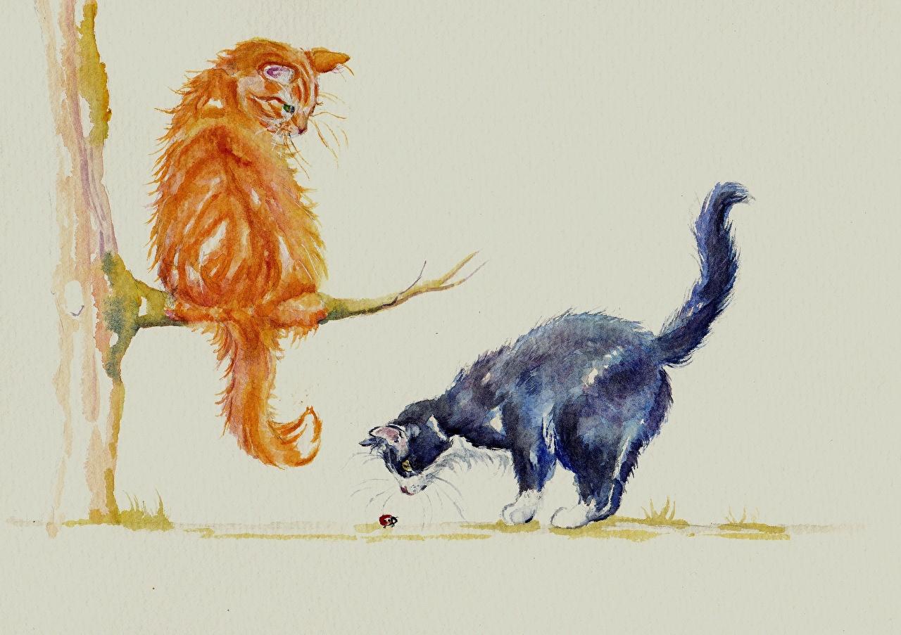Обои для рабочего стола коты два Рыжий животное Рисованные кот Кошки кошка 2 две Двое рыжая рыжие вдвоем Животные