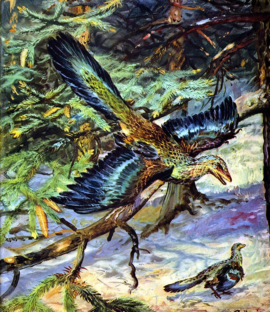 Фотография Zdenek Burian Динозавры Archaeopteryx lithographica Ветки Животные Древние животные Зденек Буриан ветвь