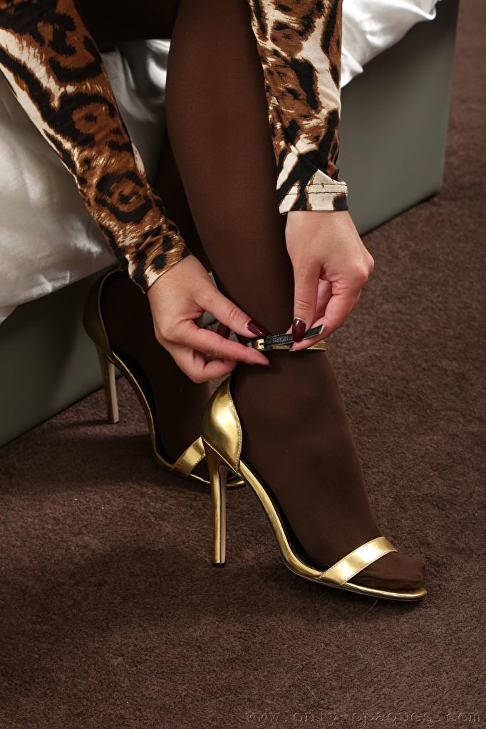 Фотография Колготки молодая женщина ног Руки Крупным планом Туфли  для мобильного телефона колготок колготках девушка Девушки молодые женщины Ноги рука вблизи туфлях туфель