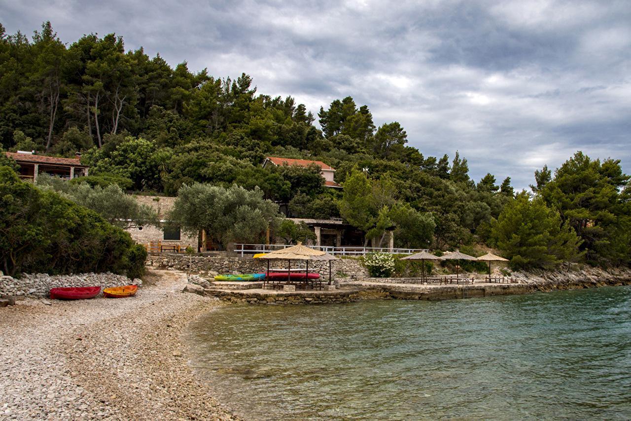 Фото Хорватия Korčula Природа песка Пирсы берег дерева песке Песок Причалы Пристань Побережье дерево Деревья деревьев