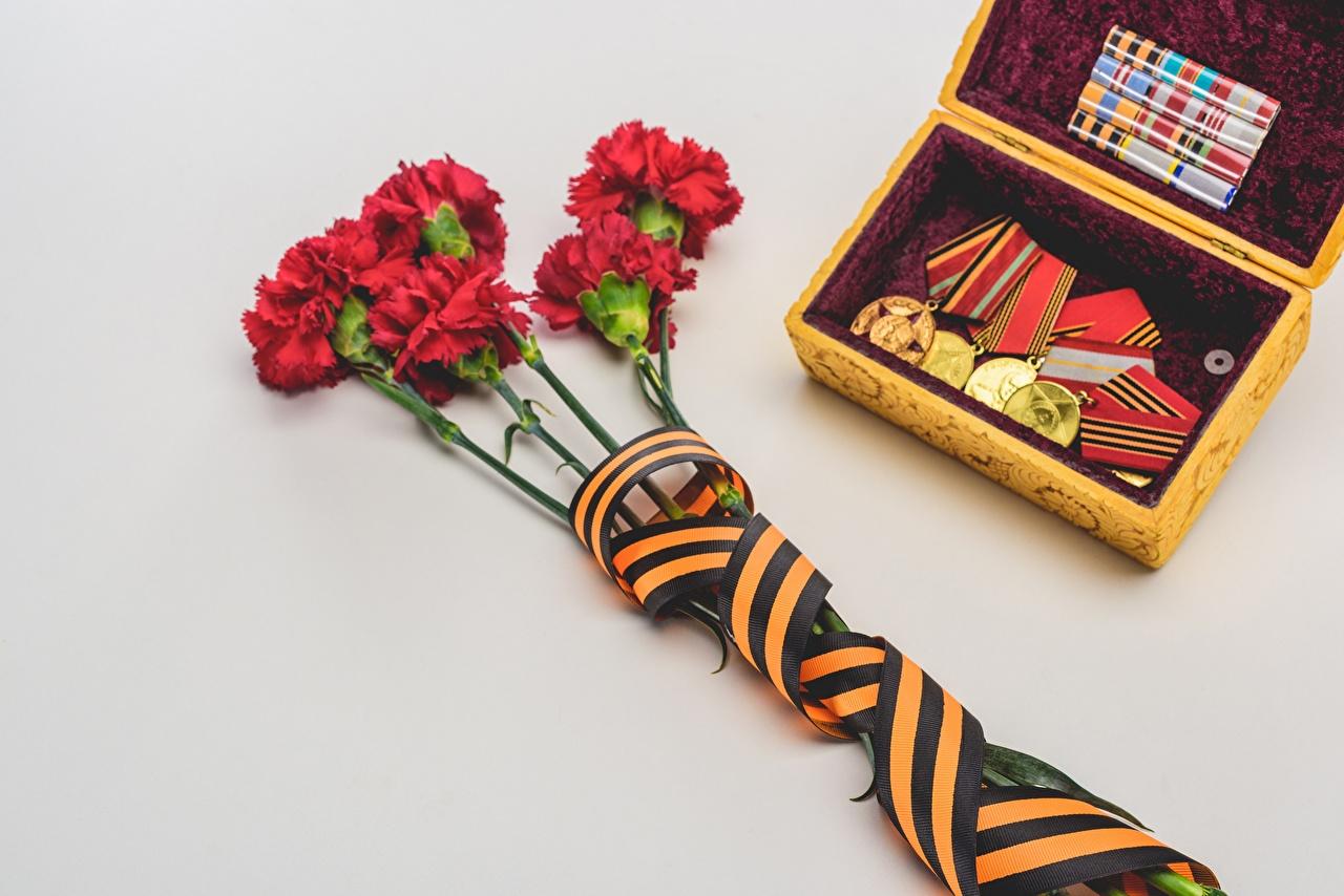 Картинка 9 мая серая Цветы Орден Гвоздики Лента медали Серый фон День Победы Серый серые цветок гвоздика Медаль ленточка сером фоне