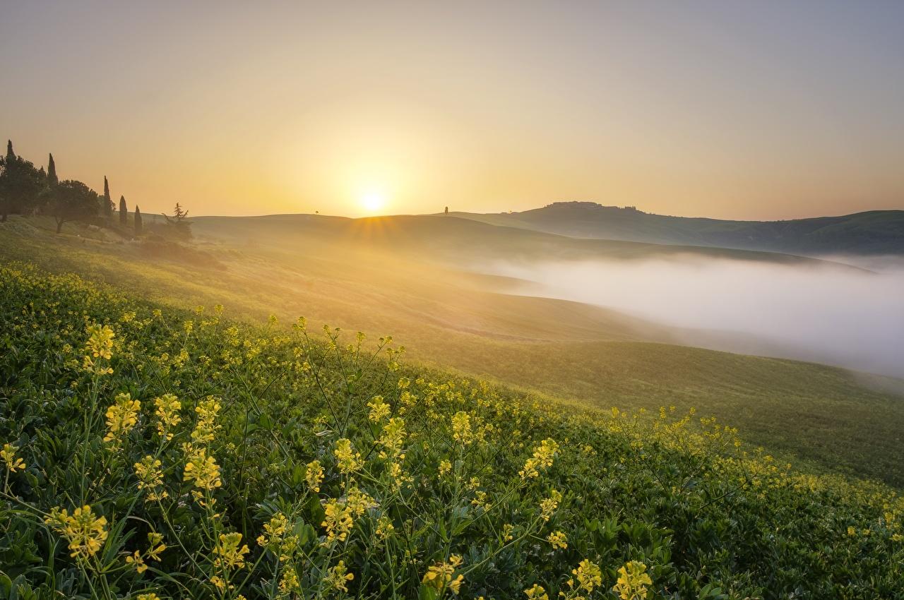 Картинки тумане Природа Луга холм Пейзаж Рассветы и закаты Трава Туман тумана Холмы холмов рассвет и закат траве