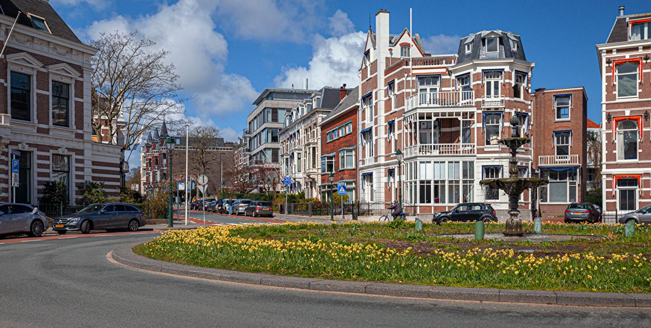 Фото голландия The Hague Улица Дома город Нидерланды улиц улице Здания Города