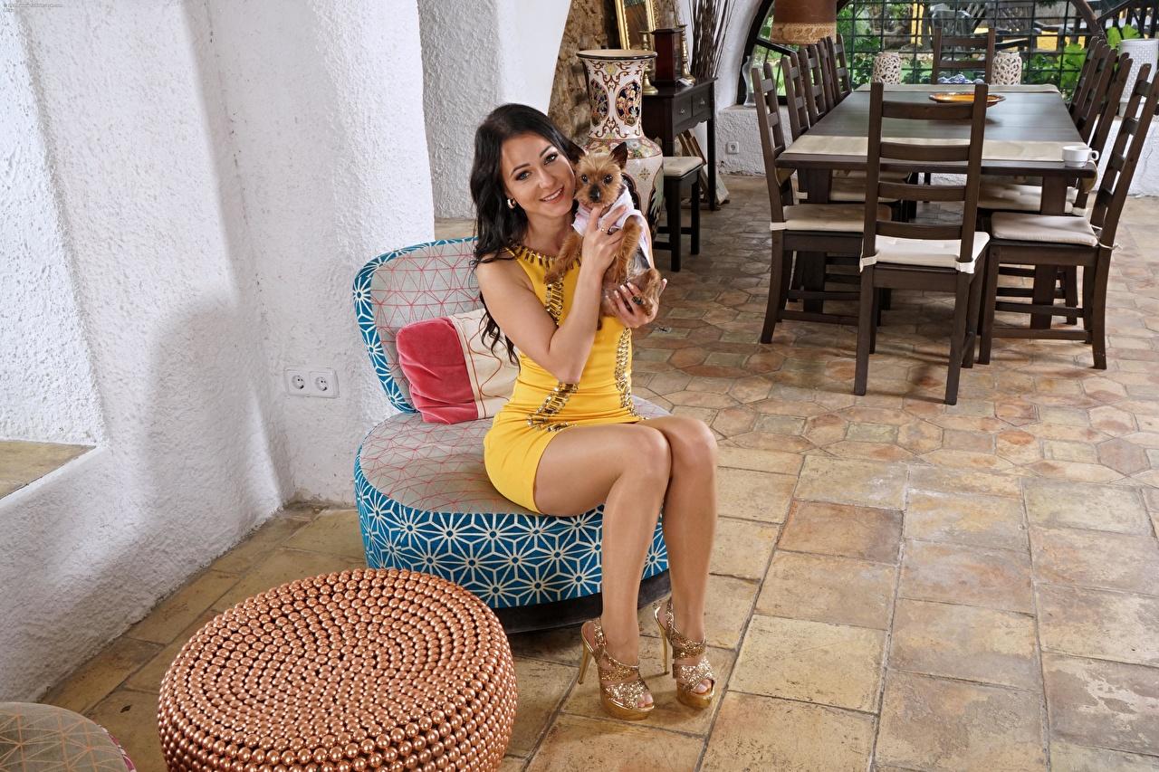 Обои для рабочего стола Melisa Mendiny собака брюнеток улыбается молодые женщины ног Сидит Туфли Мелисса Мендини Собаки Брюнетка брюнетки Улыбка девушка Девушки молодая женщина Ноги сидя сидящие туфлях туфель