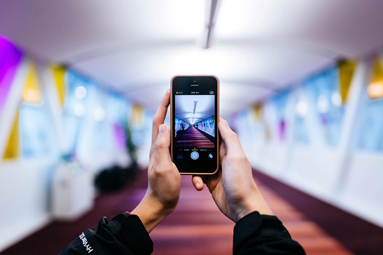 Картинки в руке телефон