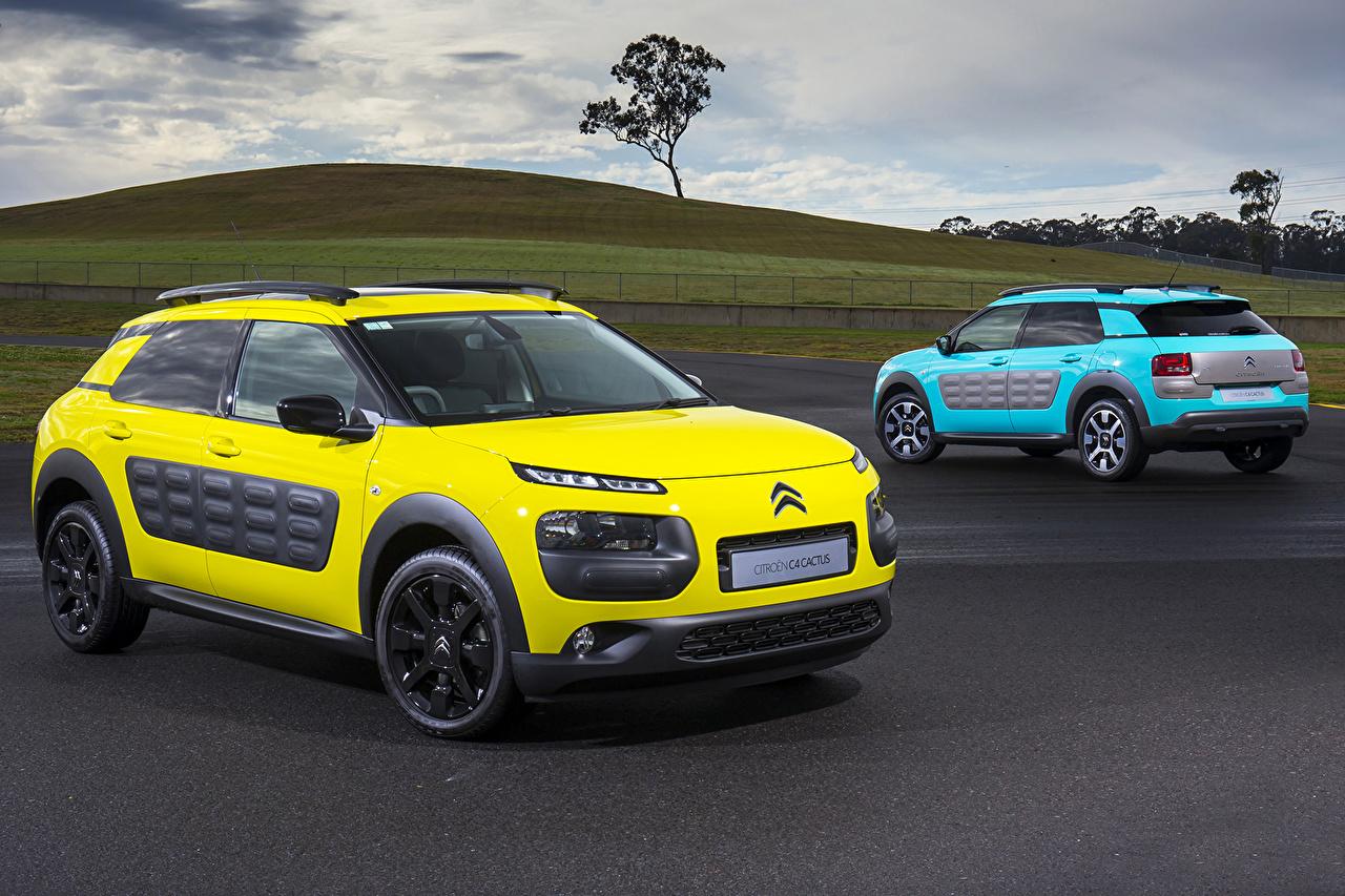 Фотография Ситроен 2015 C4 Cactus два желтая голубая машины Citroen 2 две Двое вдвоем Желтый желтые желтых Голубой голубые голубых авто машина Автомобили автомобиль