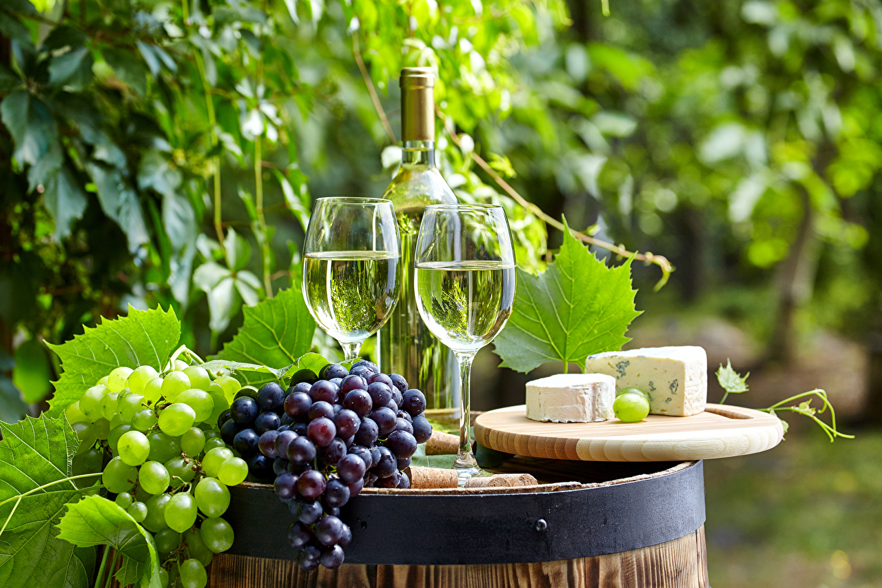 Фотография Двое Вино Сыры Виноград Пища бокал бутылки 2 два две вдвоем Еда Бокалы Бутылка Продукты питания