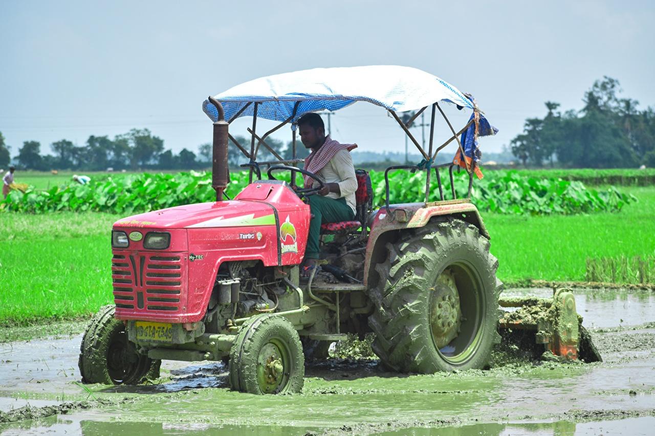 Обои для рабочего стола Трактор работают indian Поля грязный тракторы трактора Работа работает Грязь в грязи