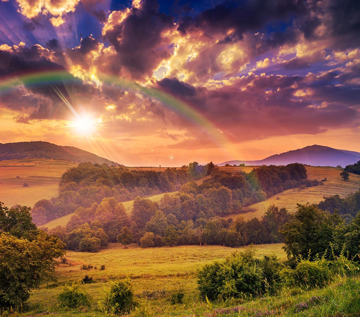 Фото Осень Радуга Природа Леса Поля Небо Пейзаж Облака сезон года осенние Времена года