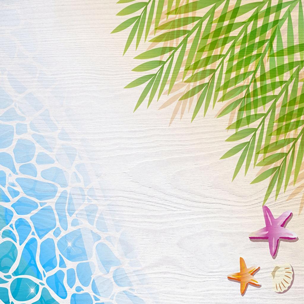 Фотографии Море Отдых Природа Ветки Шаблон поздравительной открытки релакс отдыхает ветвь ветка на ветке