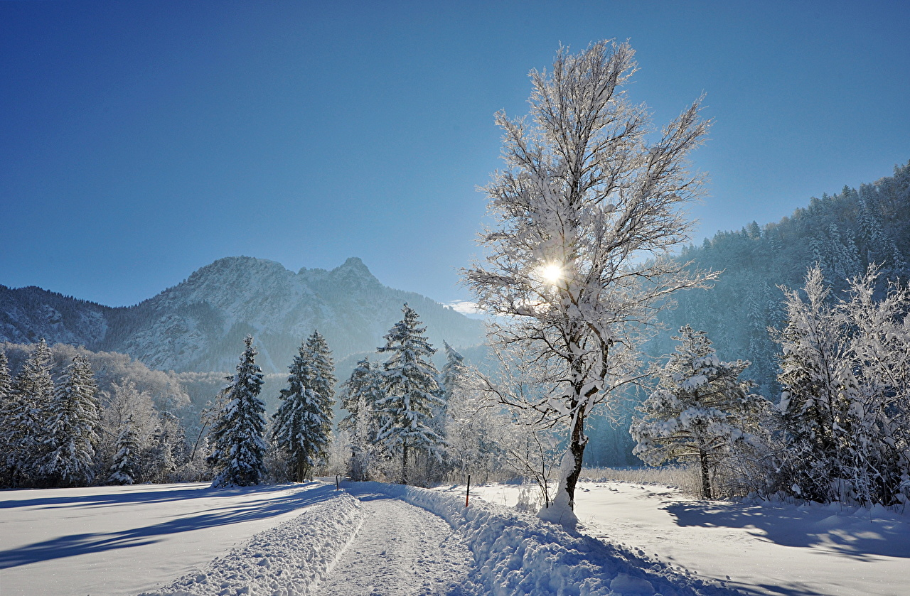 Обои для рабочего стола Горы Природа Снег Пейзаж деревьев гора снеге снегу снега дерево дерева Деревья