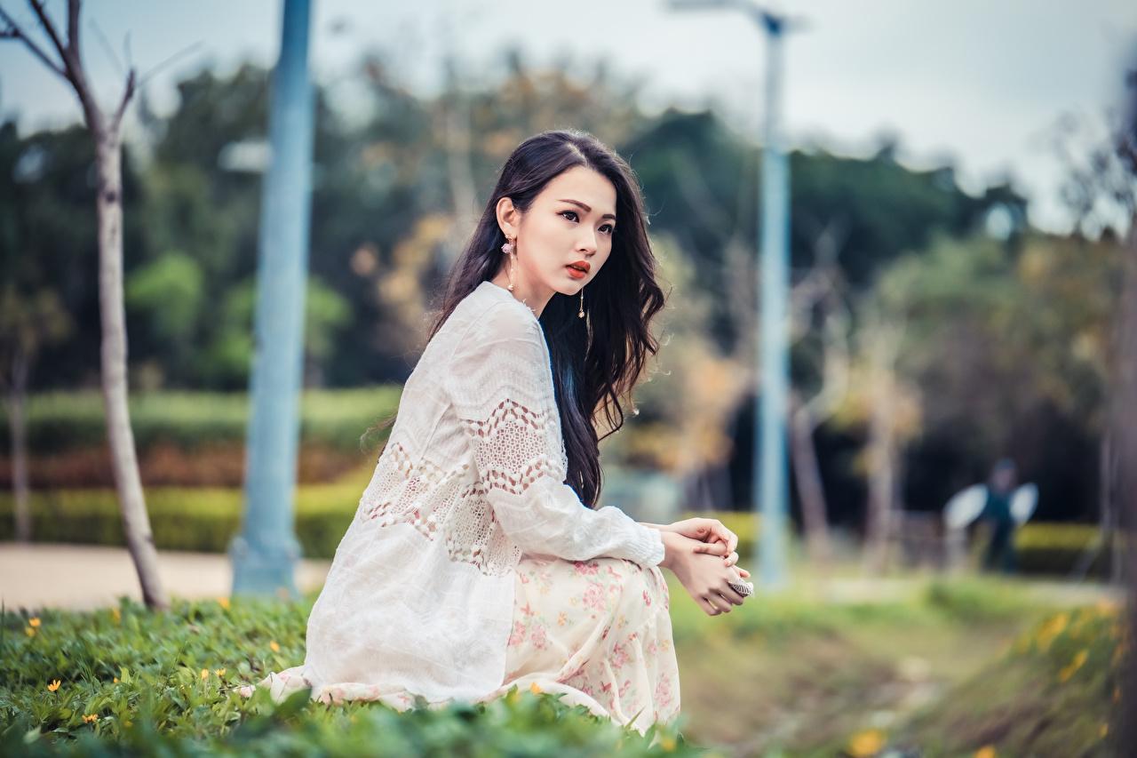 Фото боке девушка азиатка Сидит Взгляд Размытый фон Девушки молодые женщины молодая женщина Азиаты азиатки сидя сидящие смотрят смотрит