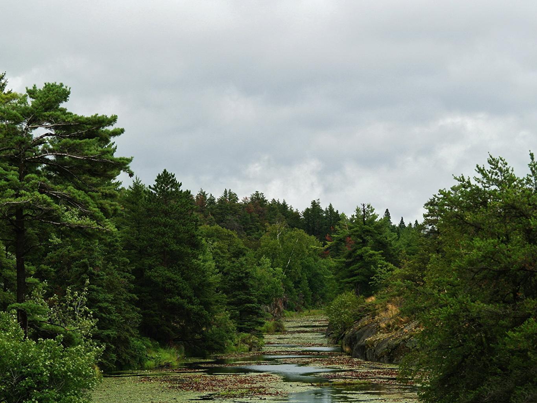 Картинка Канада Ontario Природа река Реки речка