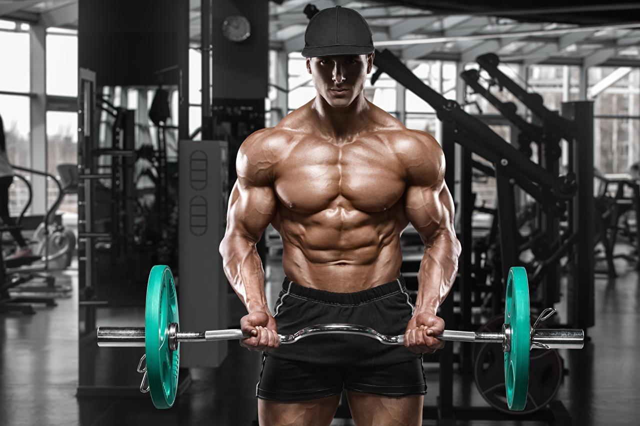 Фотографии Мужчины мускулы спортивный зал физическое упражнение Спорт Штанга Бодибилдинг Бейсболка Мышцы мужчина Спортзал спортзале Тренировка тренируется штангой спортивные спортивная спортивный Кепка кепке кепкой