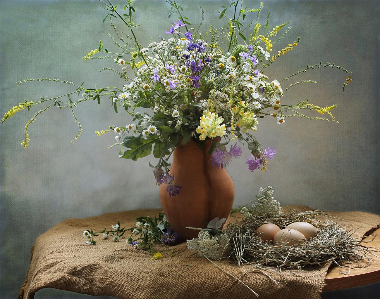 Фотографии яйцами Гнездо цветок ромашка Антирринум Ваза ветвь Васильки яиц Яйца яйцо гнезде гнезда Цветы Ромашки Львиный зев вазе вазы ветка Ветки на ветке