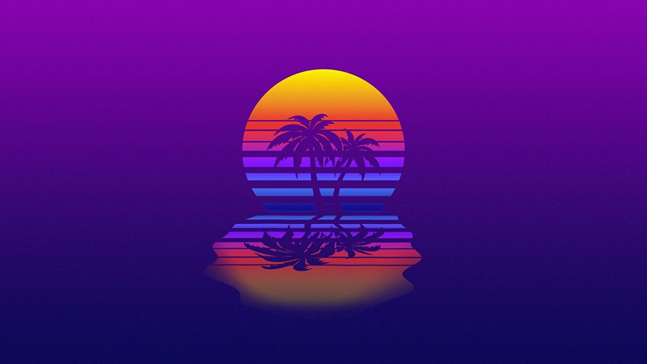 Картинка Ретровейв солнца Природа пальм Отражение Синтвейв Солнце пальма Пальмы отражении отражается