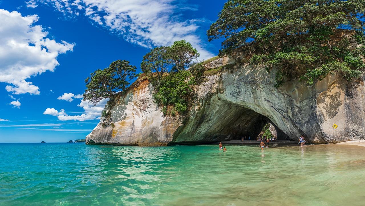 Фотография Новая Зеландия Cathedral Cove Море скалы Природа Деревья Утес скале Скала дерево дерева деревьев