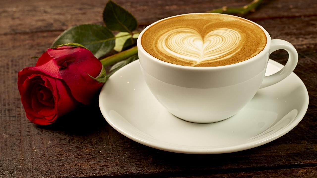 Фотография серце Кофе роза Капучино цветок Пища Чашка блюдца Сердце сердца сердечко Розы Цветы Еда чашке Блюдце Продукты питания