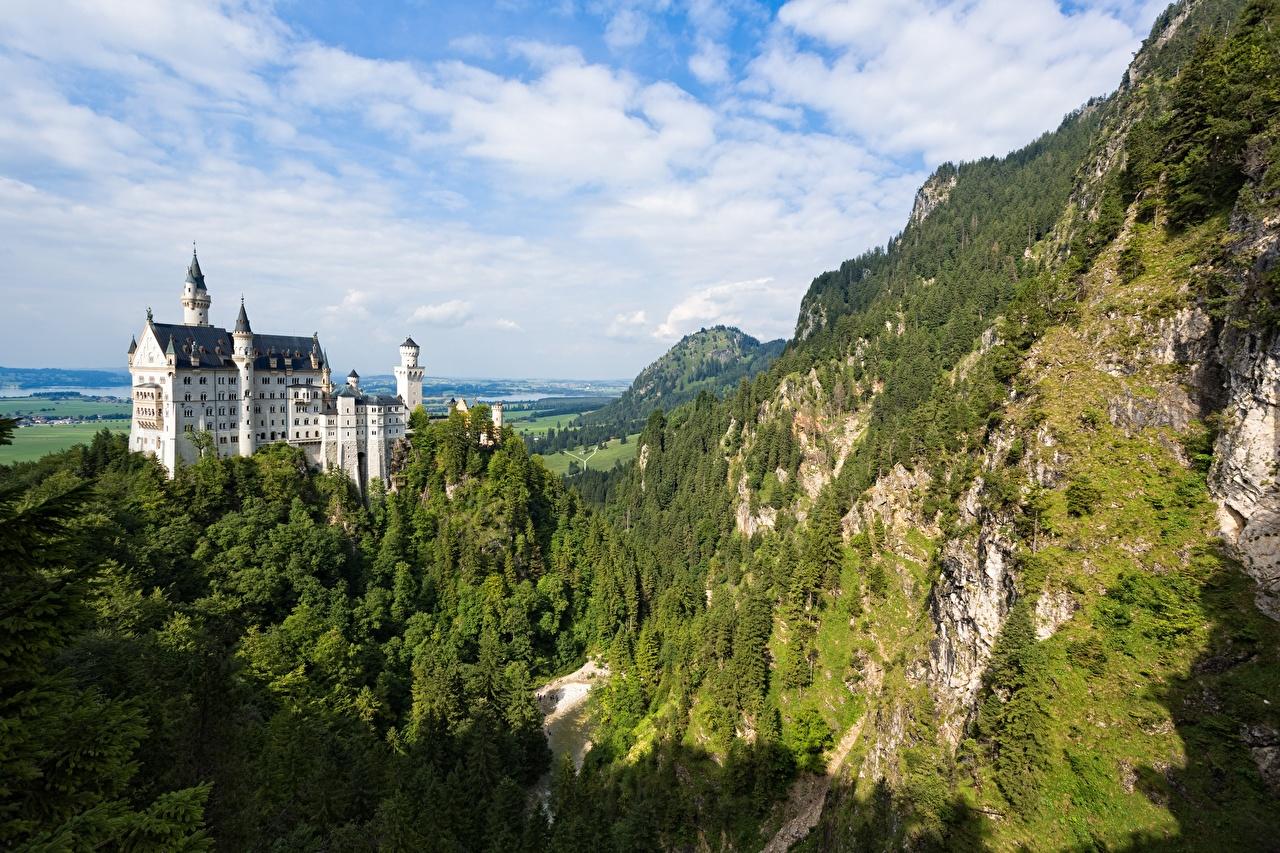 Фотография Бавария Нойшванштайн Германия Утес Горы Замки Природа Леса гора скалы скале Скала замок лес