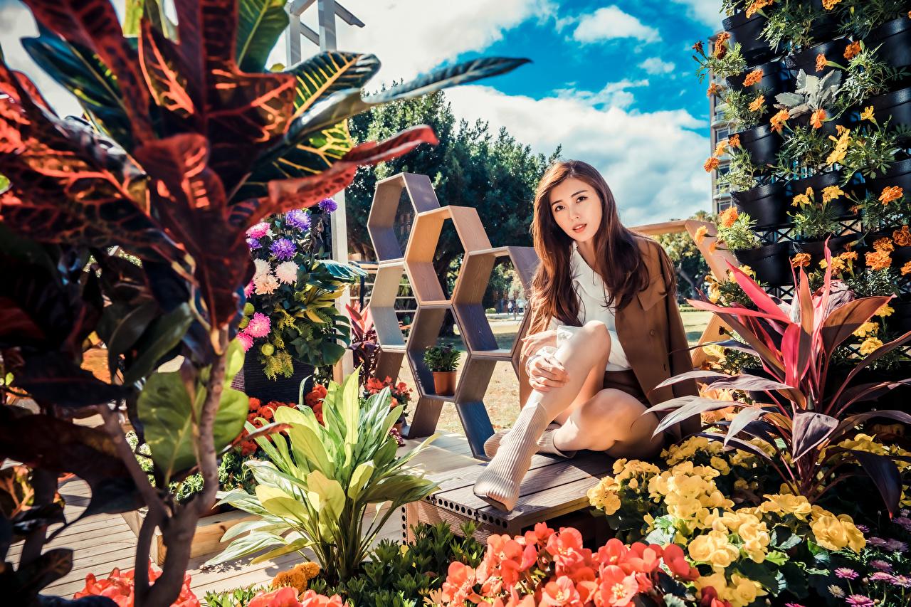 Обои для рабочего стола шатенки девушка Азиаты Сидит Взгляд Шатенка Девушки молодые женщины молодая женщина азиатка азиатки сидя сидящие смотрят смотрит