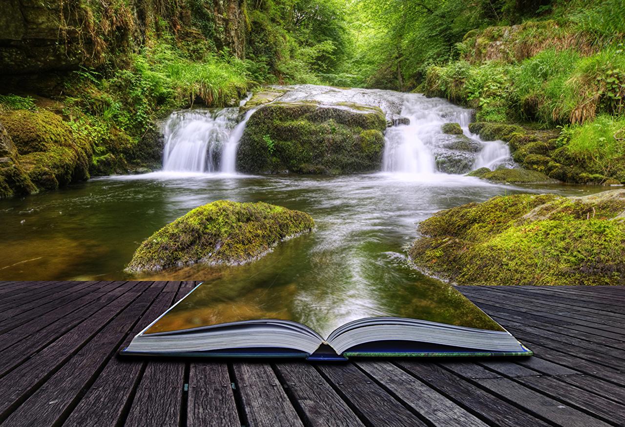 Обои для рабочего стола Природа Водопады креативные Мох Книга кустов Креатив оригинальные мха мхом книги Кусты