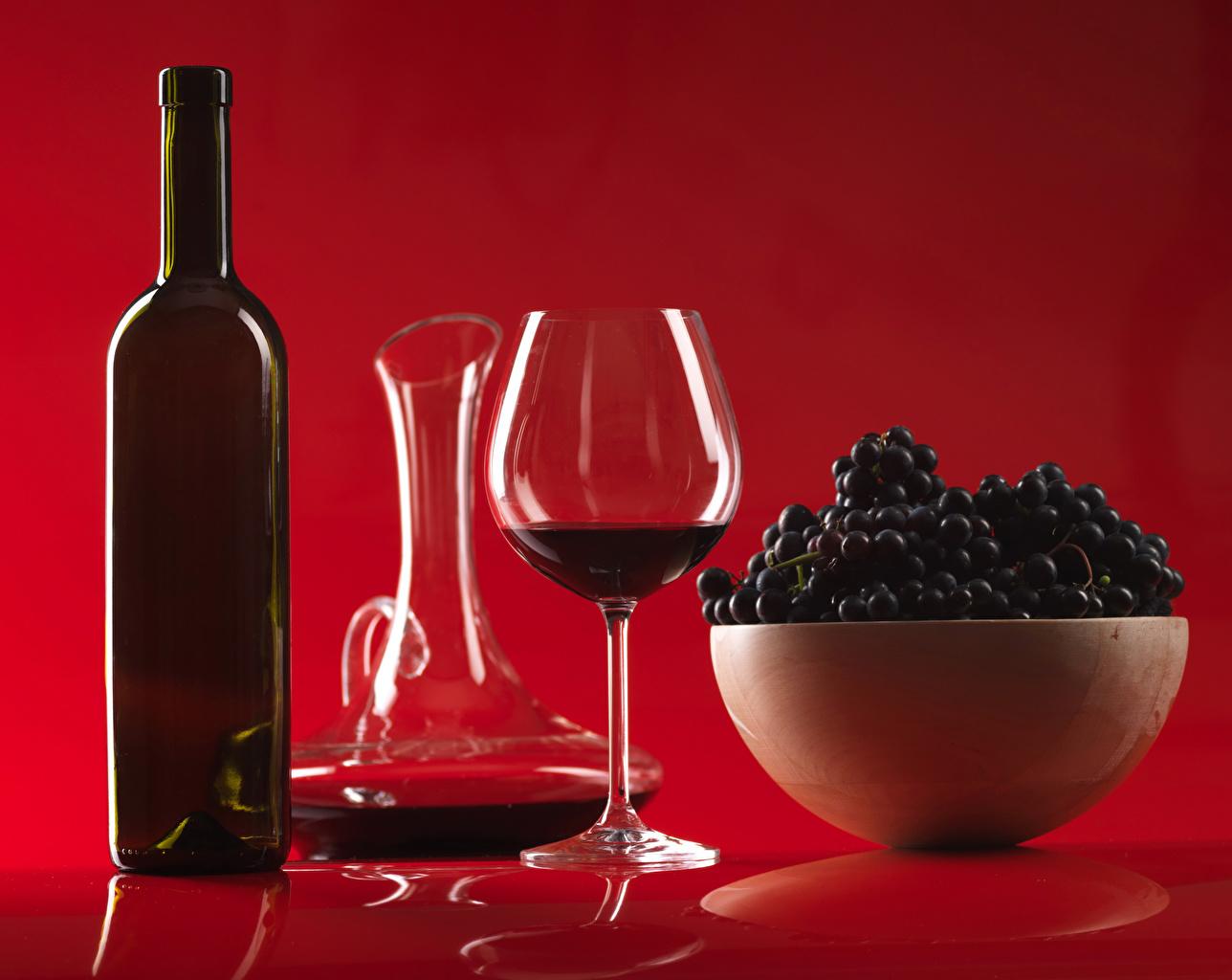 Фотографии Вино кувшины Виноград Еда бокал Бутылка красном фоне Кувшин Пища Бокалы бутылки Продукты питания Красный фон