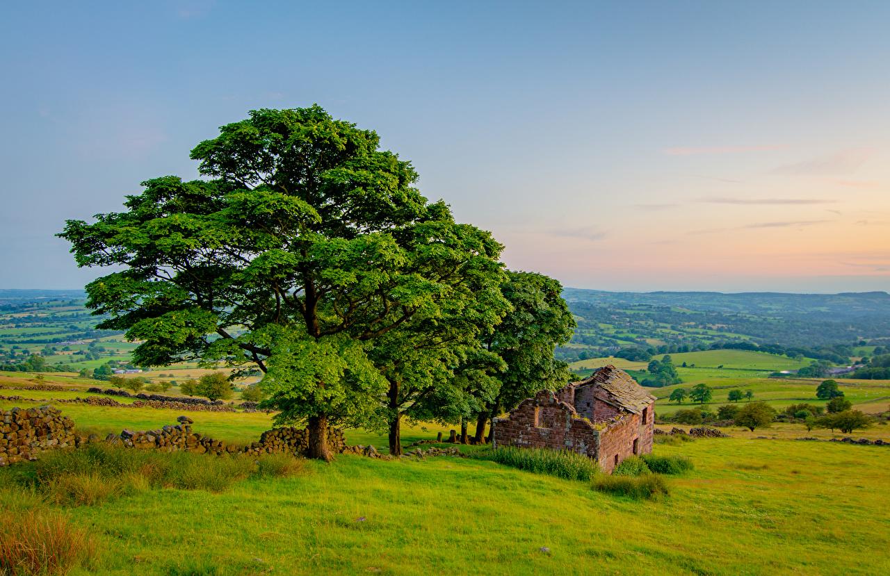 Картинка Англия Peak District, Roach end Barn Природа Пейзаж Развалины деревьев Руины дерево дерева Деревья
