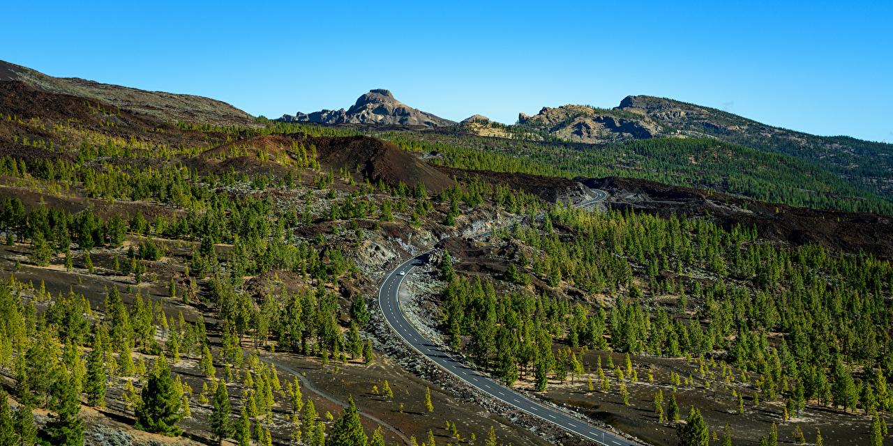 Фотографии Испания Teide National Park, Tenerife Горы Природа Дороги Сверху Деревья гора дерево дерева деревьев