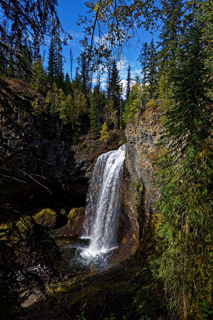 Фотография Канада Wells Gray Park, Moul Falls Скала Природа Водопады парк Камни Деревья  для мобильного телефона Утес скале скалы Парки Камень дерево дерева деревьев