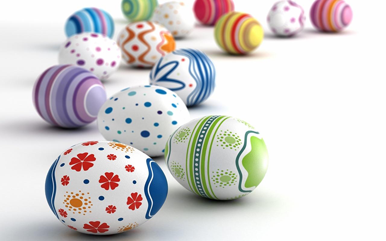 Фото Пасха Яйца Белый фон яиц яйцо яйцами белом фоне белым фоном