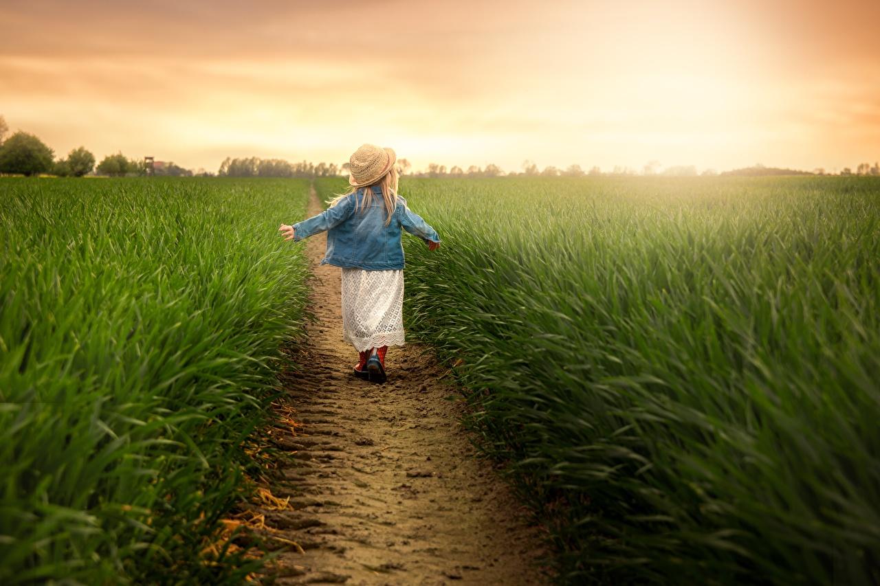 Картинки девочка Дети шляпе Природа куртках тропинка Поля Сзади траве Девочки ребёнок Тропа шляпы Шляпа тропы Куртка куртке куртки Трава вид сзади