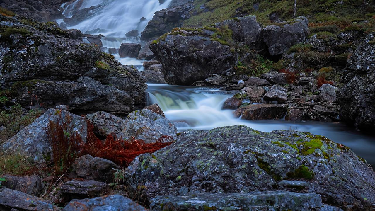 Картинка Норвегия Samnanger Ручей Природа мхом Камень ручеек Мох мха Камни