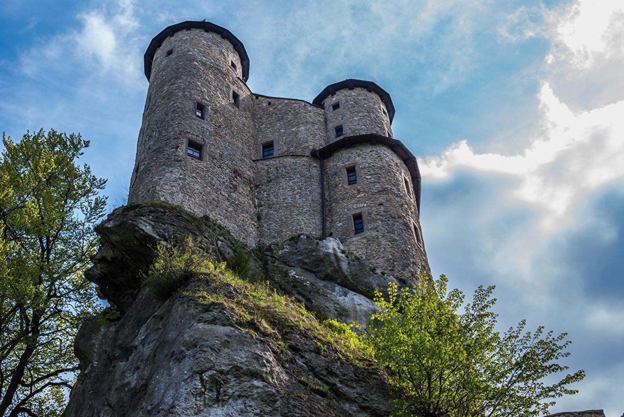 Фото Польша Ogrodzieniec Castle Утес Замки Города Скала