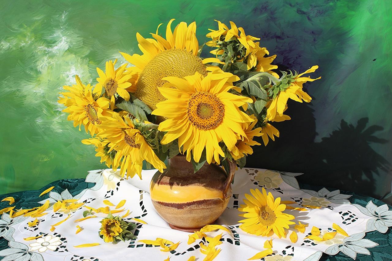 Картинки букет цветок Подсолнечник Ваза Букеты Цветы Подсолнухи вазе вазы