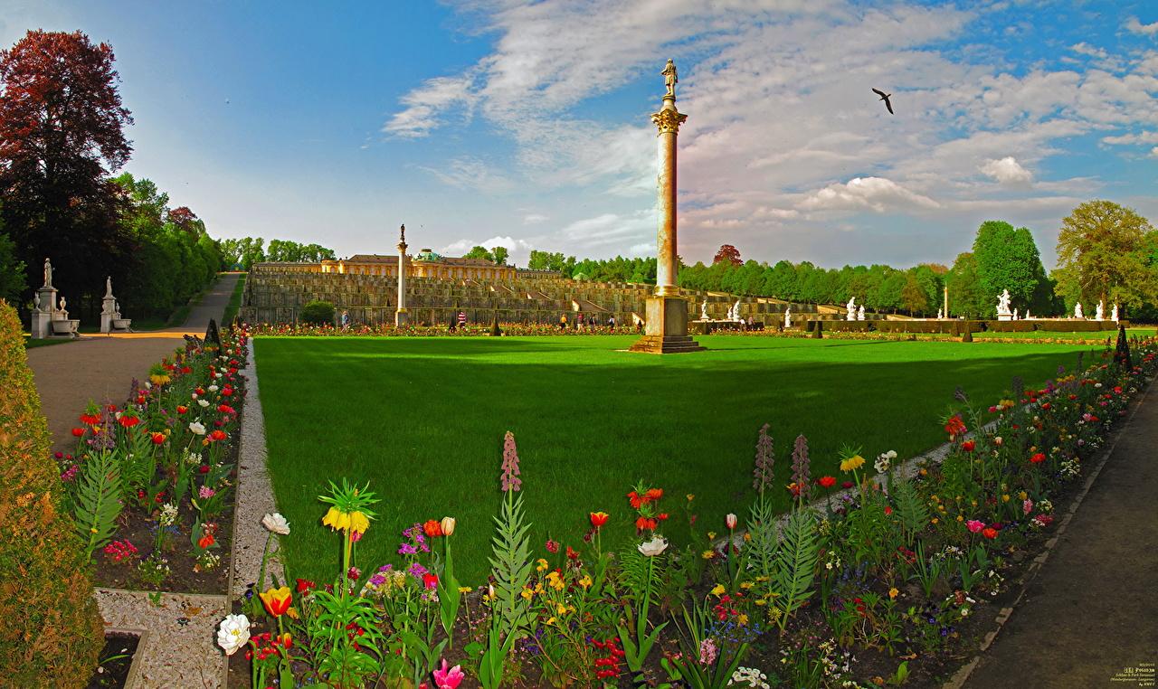 Картинка Потсдам Германия Brandenburg Цветы траве газоне Города Ландшафтный дизайн Дизайн цветок Газон Трава город дизайна