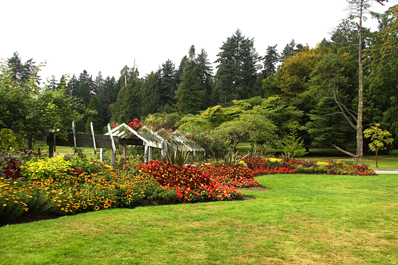 Картинки Ванкувер Канада Stanley Park Природа Парки Газон Кусты дерево парк газоне кустов дерева Деревья деревьев