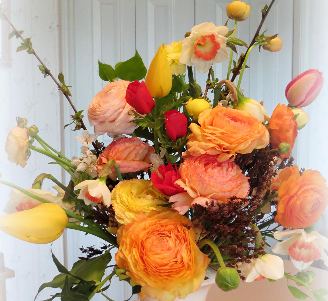 Фотография Букеты Розы Тюльпаны Лютик Цветы Нарциссы букет роза тюльпан цветок