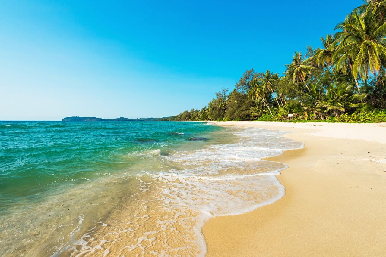 Фотографии Море Природа Тропики Побережье берег