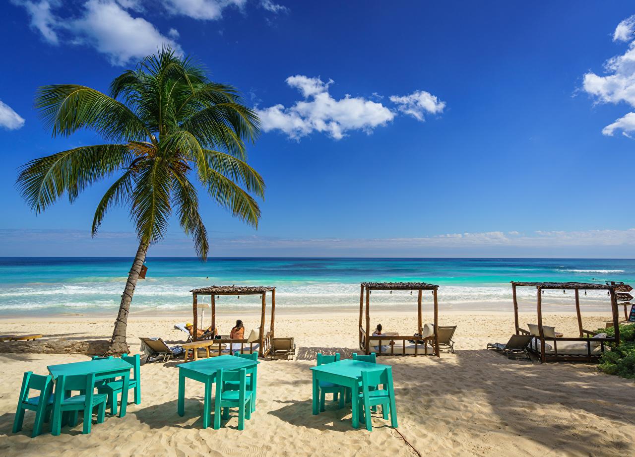 Фото Мексика This Hip Hotel, Tulum, Quintana Roo пляжа Природа Небо Пальмы берег Пляж пляжи пляже пальм пальма Побережье