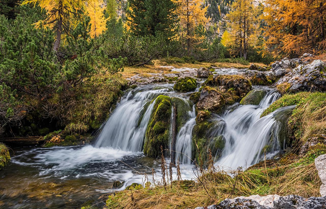 Фотографии Альпы Италия Dolomites Осень Природа Водопады лес река Камень Деревья альп осенние Леса Реки речка Камни дерево дерева деревьев